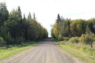 Photo 19: 53128 RGE RD 34: Rural Parkland County Rural Land/Vacant Lot for sale : MLS®# E4174450