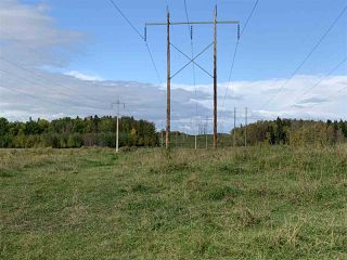 Photo 5: 53128 RGE RD 34: Rural Parkland County Rural Land/Vacant Lot for sale : MLS®# E4174450