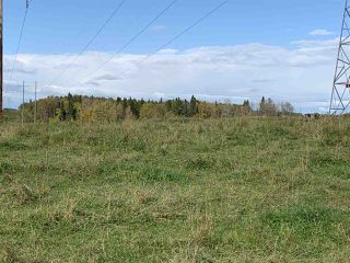Photo 1: 53128 RGE RD 34: Rural Parkland County Rural Land/Vacant Lot for sale : MLS®# E4174450