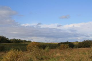 Photo 20: 53128 RGE RD 34: Rural Parkland County Rural Land/Vacant Lot for sale : MLS®# E4174450