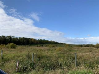 Photo 15: 53128 RGE RD 34: Rural Parkland County Rural Land/Vacant Lot for sale : MLS®# E4174450