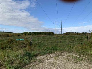 Photo 9: 53128 RGE RD 34: Rural Parkland County Rural Land/Vacant Lot for sale : MLS®# E4174450