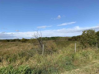 Photo 14: 53128 RGE RD 34: Rural Parkland County Rural Land/Vacant Lot for sale : MLS®# E4174450