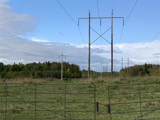 Photo 8: 53128 RGE RD 34: Rural Parkland County Rural Land/Vacant Lot for sale : MLS®# E4174450