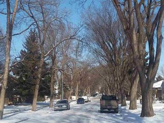 Photo 5: 12017 58 Street in Edmonton: Zone 06 Vacant Lot for sale : MLS®# E4192946
