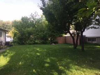 Photo 1: 12017 58 Street in Edmonton: Zone 06 Vacant Lot for sale : MLS®# E4192946