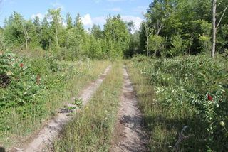 Photo 16: Lt 27 Ramblewood Trail in Kawartha Lakes: Rural Bexley Property for sale : MLS®# X4857401