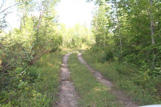 Photo 10: Lt 27 Ramblewood Trail in Kawartha Lakes: Rural Bexley Property for sale : MLS®# X4857401