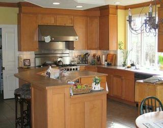 Photo 6: 10011 SWIFT LN in Richmond: Woodwards House for sale : MLS®# V572293