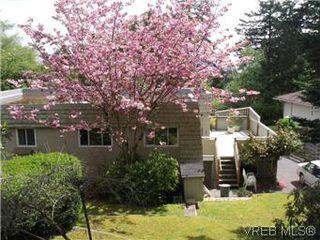 Photo 17: 5162 Lochside Dr in VICTORIA: SE Cordova Bay House for sale (Saanich East)  : MLS®# 571275