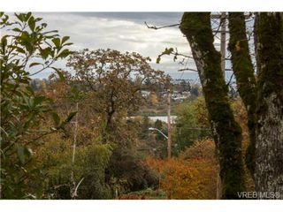 Photo 9: 4041 Nelthorpe St in VICTORIA: SE High Quadra Land for sale (Saanich East)  : MLS®# 685817