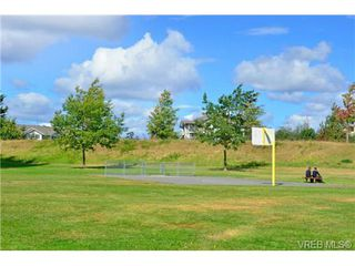 Photo 16: 4041 Nelthorpe St in VICTORIA: SE High Quadra Land for sale (Saanich East)  : MLS®# 685817