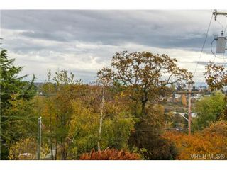 Photo 4: 4041 Nelthorpe St in VICTORIA: SE High Quadra Land for sale (Saanich East)  : MLS®# 685817