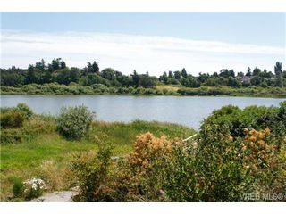 Photo 14: 4041 Nelthorpe St in VICTORIA: SE High Quadra Land for sale (Saanich East)  : MLS®# 685817