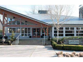 "Photo 19: 112 700 KLAHANIE Drive in Port Moody: Port Moody Centre Condo for sale in ""THE BOARDWALK"" : MLS®# R2019414"