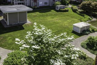 "Photo 12: 432 4280 MONCTON Street in Richmond: Steveston South Condo for sale in ""THE VILLAGE"" : MLS®# R2078077"