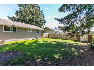 Photo 14: 2657 CENTENNIAL Street in Abbotsford: Abbotsford West House for sale : MLS®# R2090719