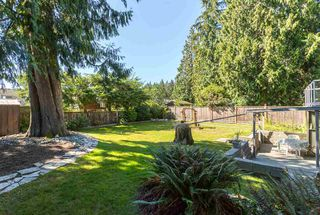 Photo 18: 3643 KENNEDY Street in Port Coquitlam: Glenwood PQ House for sale : MLS®# R2100459