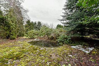 Photo 18: 19957 78B Avenue in Langley: Willoughby Heights House for sale : MLS®# R2175333
