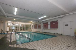Photo 17: 229 2451 Gladwin Road in Abbotsford: Abbotsford West Condo for sale : MLS®# R2215034