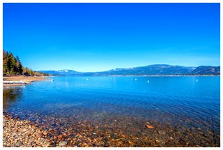 Photo 15: 1643 Blind Bay Road: Sorrento House for sale (Shuswap Lake)  : MLS®# 10176799