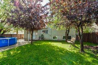 Photo 5: 8708 135 Avenue in Edmonton: Zone 02 House for sale : MLS®# E4125382