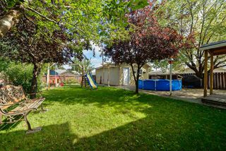 Photo 6: 8708 135 Avenue in Edmonton: Zone 02 House for sale : MLS®# E4125382