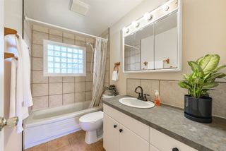 Photo 24: 8708 135 Avenue in Edmonton: Zone 02 House for sale : MLS®# E4125382
