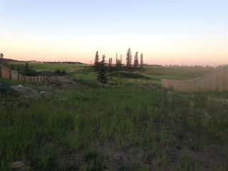 Main Photo: 1712 Adamson Crescent in Edmonton: Zone 55 Vacant Lot for sale : MLS®# E4134378