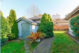 Photo 21: 3991 Hopesmore Drive in VICTORIA: SE Mt Doug Single Family Detached for sale (Saanich East)  : MLS®# 401571