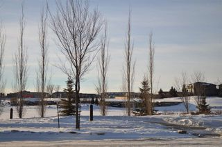 Photo 1: 1177 Hainstock Green in Edmonton: Zone 55 Vacant Lot for sale : MLS®# E4139892