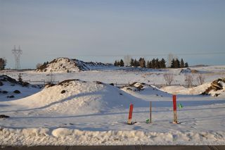Photo 2: 1177 Hainstock Green in Edmonton: Zone 55 Vacant Lot for sale : MLS®# E4139892