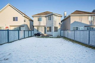 Photo 21: 8309 11 Avenue in Edmonton: Zone 53 House for sale : MLS®# E4144311
