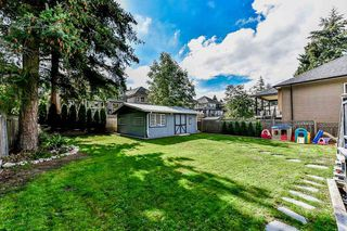 Photo 17: 11726 98A Avenue in Surrey: Royal Heights House for sale (North Surrey)  : MLS®# R2341653
