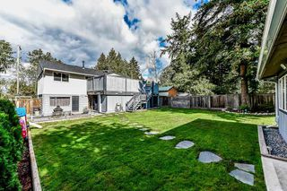 Photo 19: 11726 98A Avenue in Surrey: Royal Heights House for sale (North Surrey)  : MLS®# R2341653