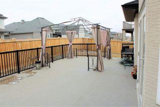 Photo 28:  in Edmonton: Zone 55 House for sale : MLS®# E4151126