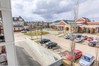 Photo 18: 307 4450 MCCRAE Avenue in Edmonton: Zone 27 Condo for sale : MLS®# E4155125