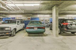 Photo 23: 307 4450 MCCRAE Avenue in Edmonton: Zone 27 Condo for sale : MLS®# E4155125
