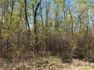 Photo 3: 6 Snow Goose Drive: Lake Manitoba Narrows Residential for sale (R19)  : MLS®# 1916200
