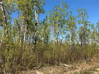 Photo 1: 6 Snow Goose Drive: Lake Manitoba Narrows Residential for sale (R19)  : MLS®# 1916200