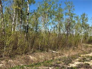 Photo 2: 6 Snow Goose Drive: Lake Manitoba Narrows Residential for sale (R19)  : MLS®# 1916200