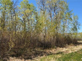 Photo 4: 6 Snow Goose Drive: Lake Manitoba Narrows Residential for sale (R19)  : MLS®# 1916200