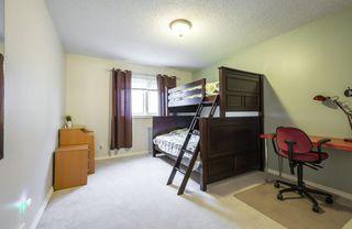 Photo 33: 15219 43 Avenue in Edmonton: Zone 14 House for sale : MLS®# E4181745