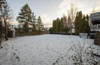 Photo 46: 15219 43 Avenue in Edmonton: Zone 14 House for sale : MLS®# E4181745