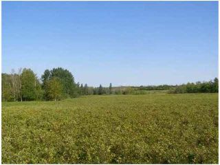 Photo 8: SW COR TWP RD 534 & RR 222: Rural Strathcona County Rural Land/Vacant Lot for sale : MLS®# E4196114
