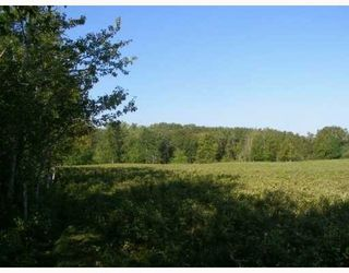 Photo 7: SW COR TWP RD 534 & RR 222: Rural Strathcona County Rural Land/Vacant Lot for sale : MLS®# E4196114