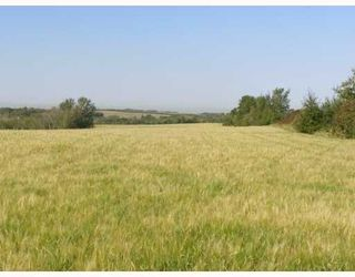 Photo 9: SW COR TWP RD 534 & RR 222: Rural Strathcona County Rural Land/Vacant Lot for sale : MLS®# E4196114
