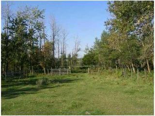 Photo 3: SW COR TWP RD 534 & RR 222: Rural Strathcona County Rural Land/Vacant Lot for sale : MLS®# E4196114