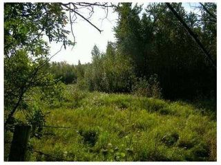 Photo 2: SW COR TWP RD 534 & RR 222: Rural Strathcona County Rural Land/Vacant Lot for sale : MLS®# E4196114