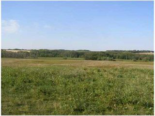 Photo 4: SW COR TWP RD 534 & RR 222: Rural Strathcona County Rural Land/Vacant Lot for sale : MLS®# E4196114